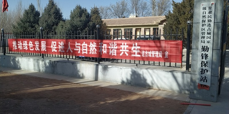 """民勤连古城保护局组织开展第八个""""世界野生动植物日""""宣传活动"""