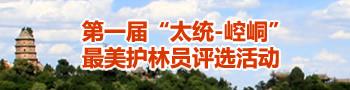 """第一届""""太统-崆峒""""最美护林员评选活动"""